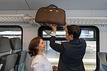 Gepäckablage